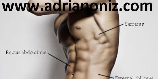 abdomiais 1