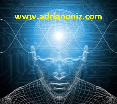 www.adrianoniz.com